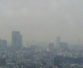 きょうの富士山 09/01/19