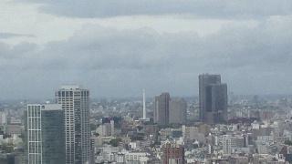きょうの富士山 100507