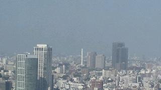 きょうの富士山 100521