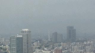 きょうの富士山100626