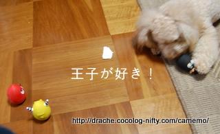 Dsc_3500_2