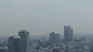 きょうの富士山 100609