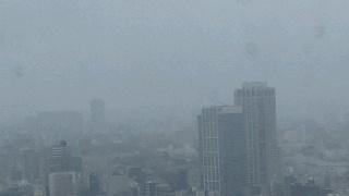 きょうの富士山 100614