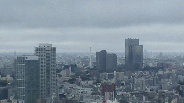 きょうの富士山 100616