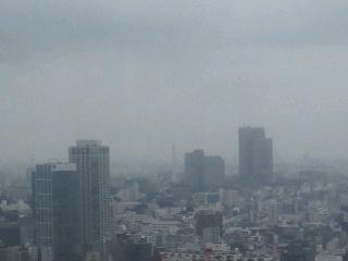 きょうの富士山 100628