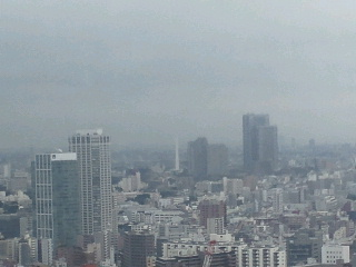 きょうの富士山 100713