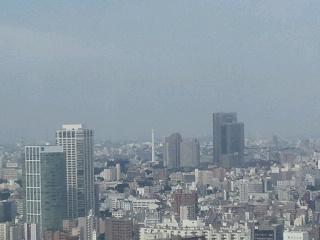 きょうの富士山 100720