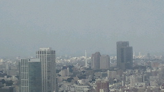 きょうの富士山 100726