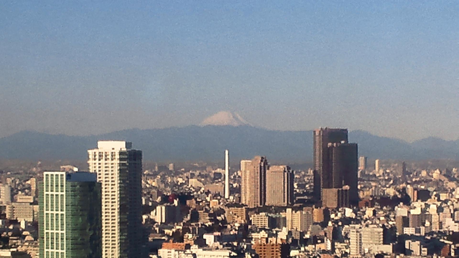 きょうの富士山 110119