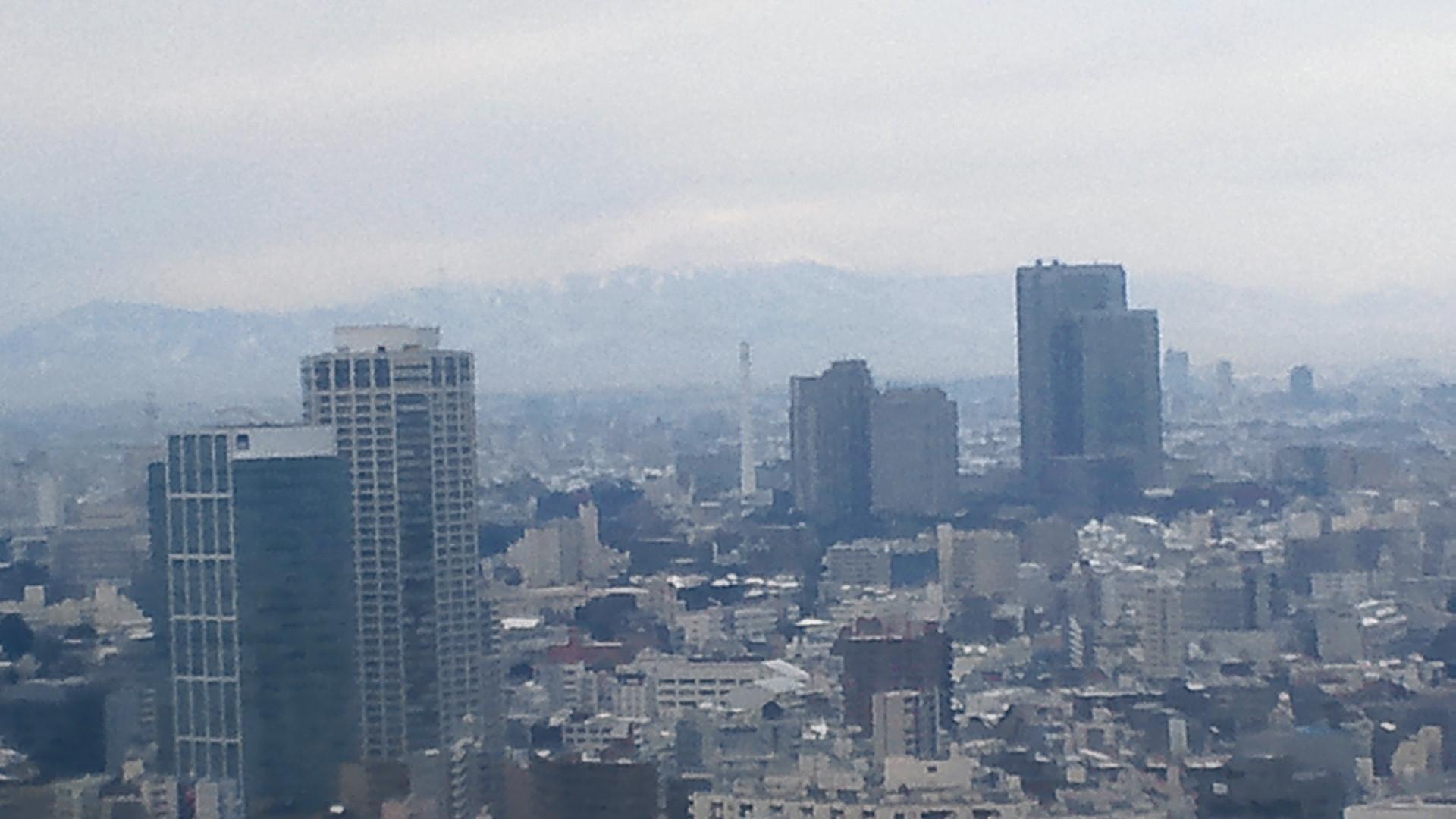 きょうの富士山 110215