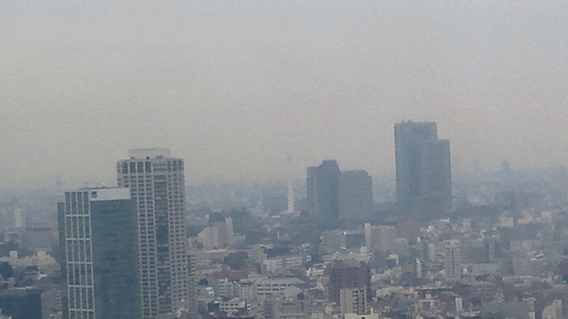 きょうの富士山 110217
