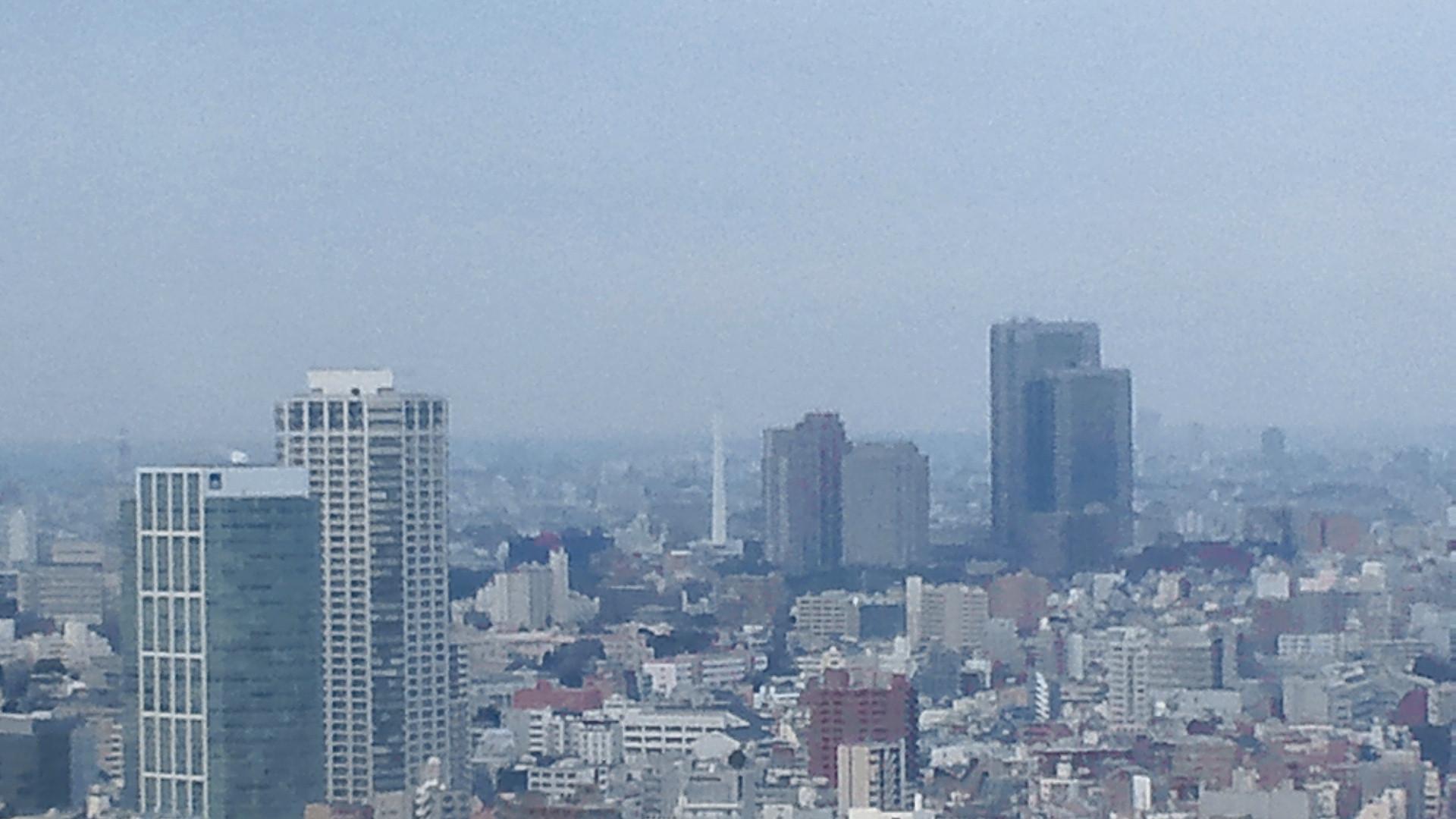 きょうの富士山 110221