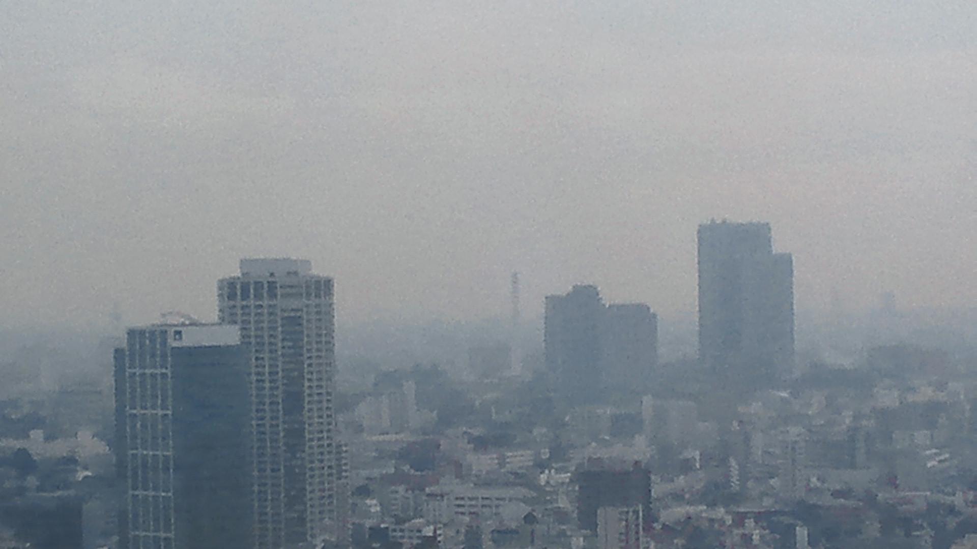 きょうの富士山 110224