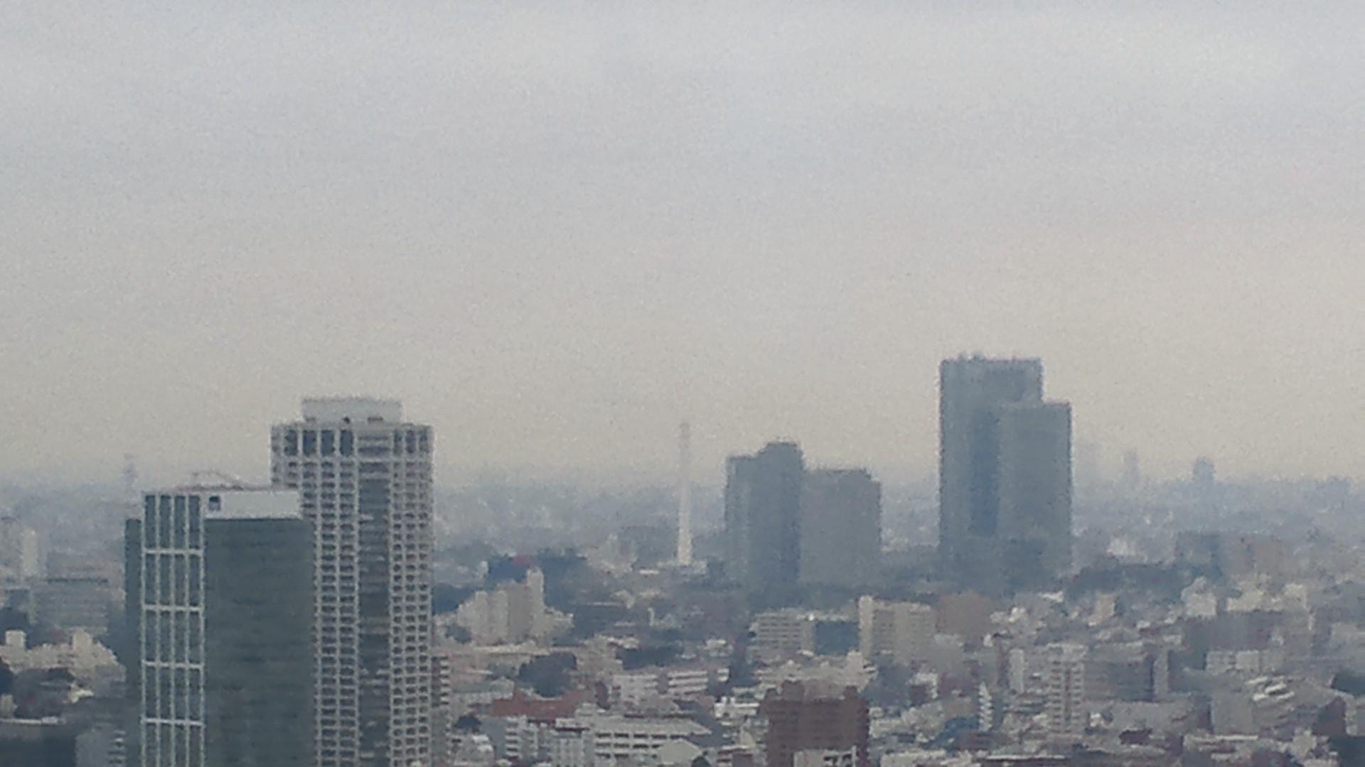 きょうの富士山 11020301
