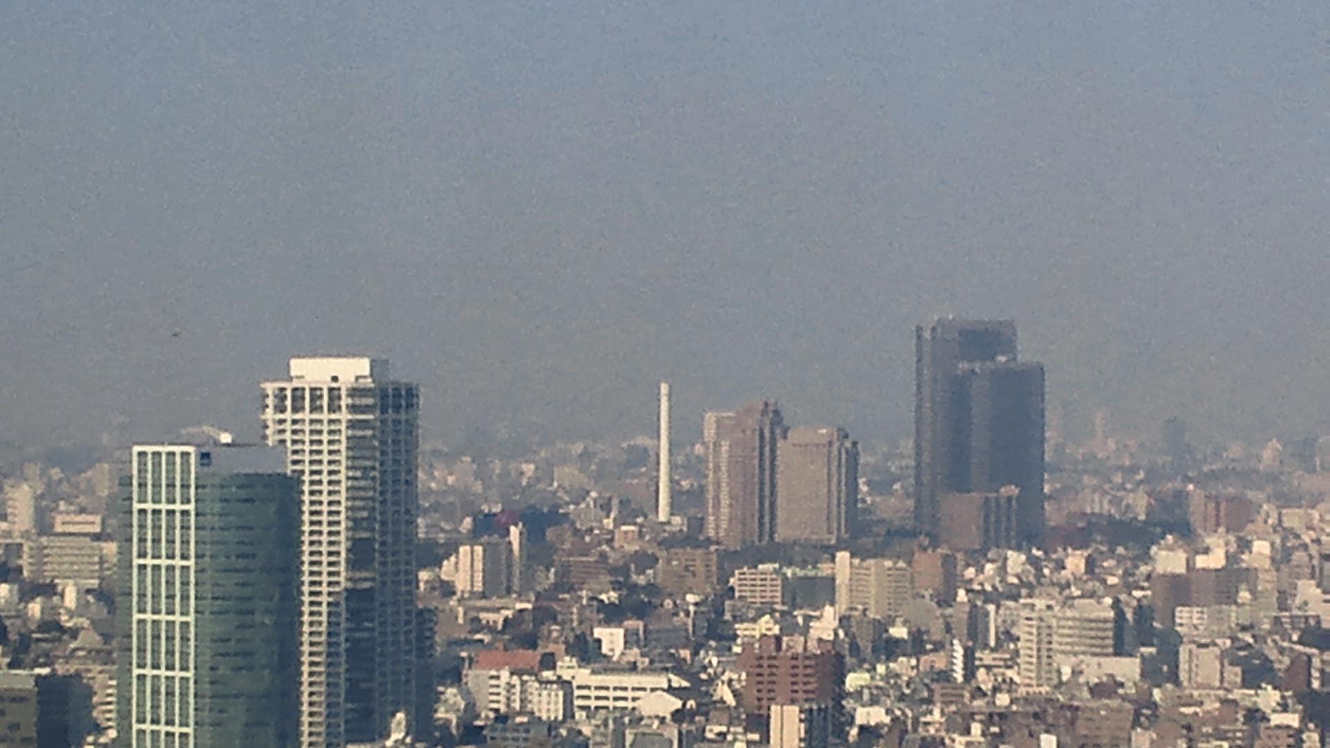 きょうの富士山 110330