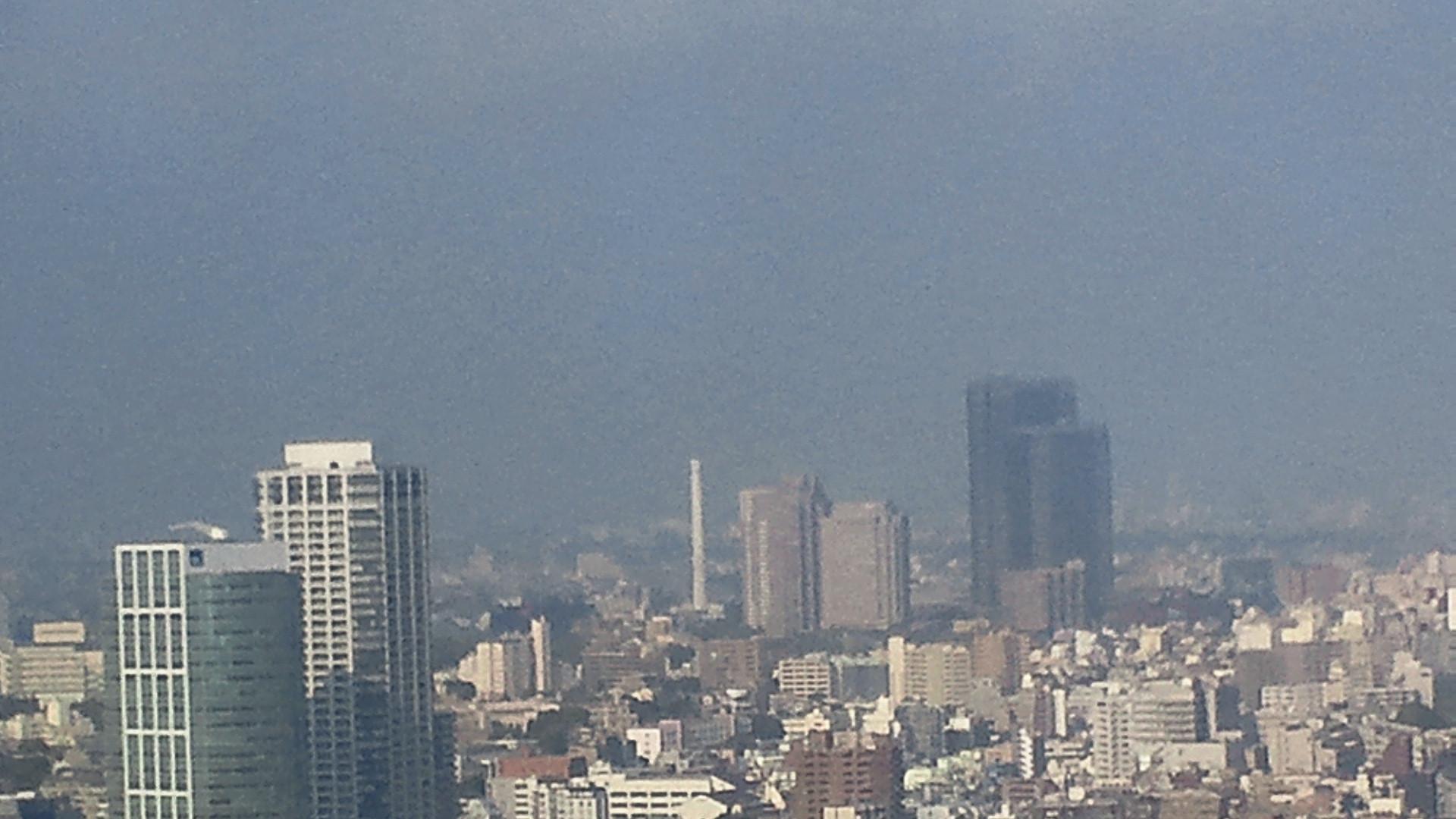 きょうの富士山 110441
