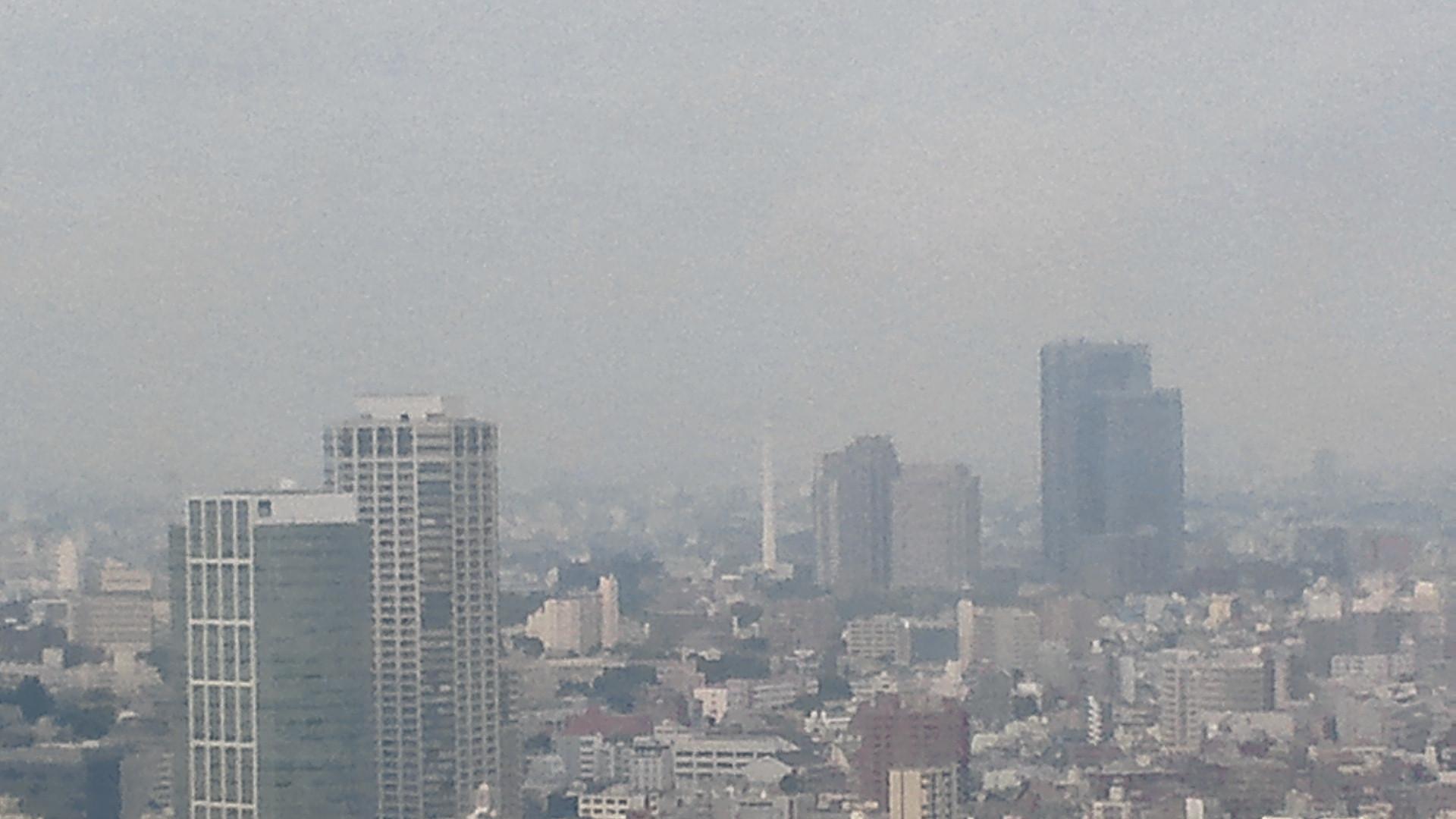 きょうの富士山 110526