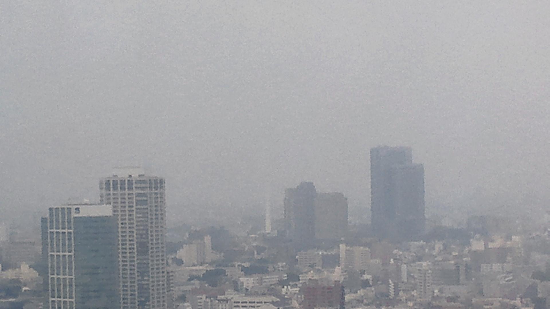 きょうの富士山 110610