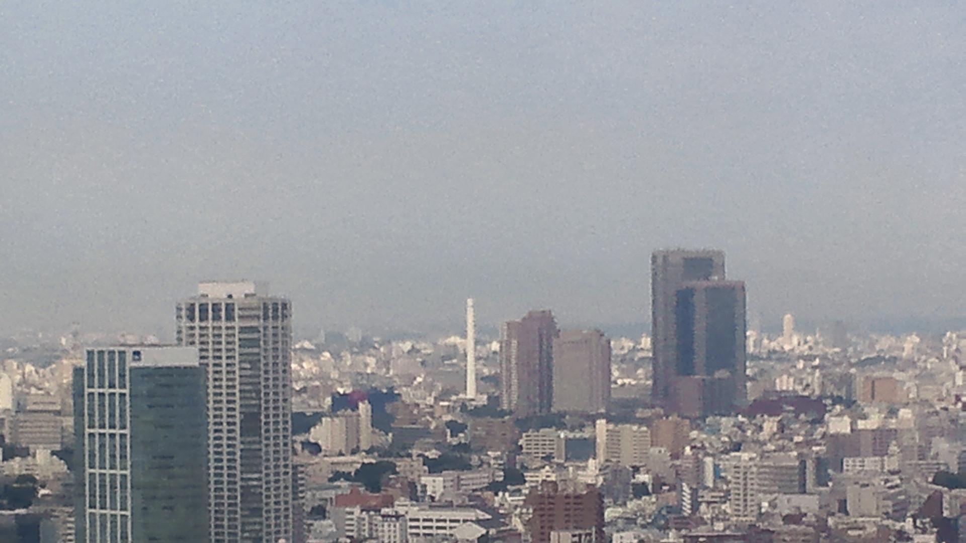 きょうの富士山 110630