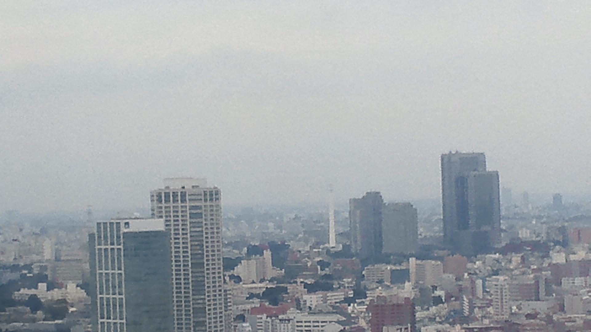 きょうの富士山 110726
