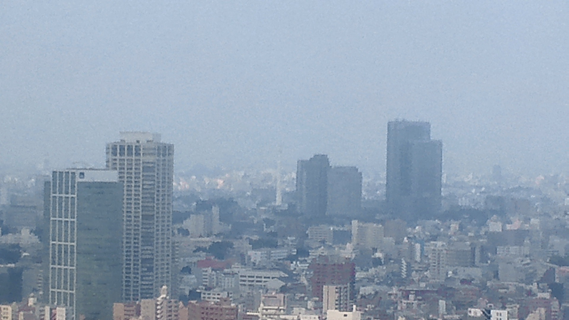 きょうの富士山 110817