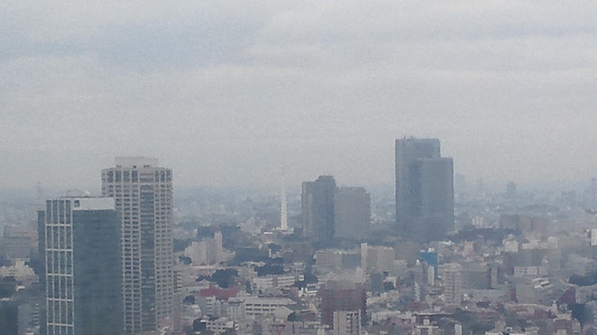 きょうの富士山 111021