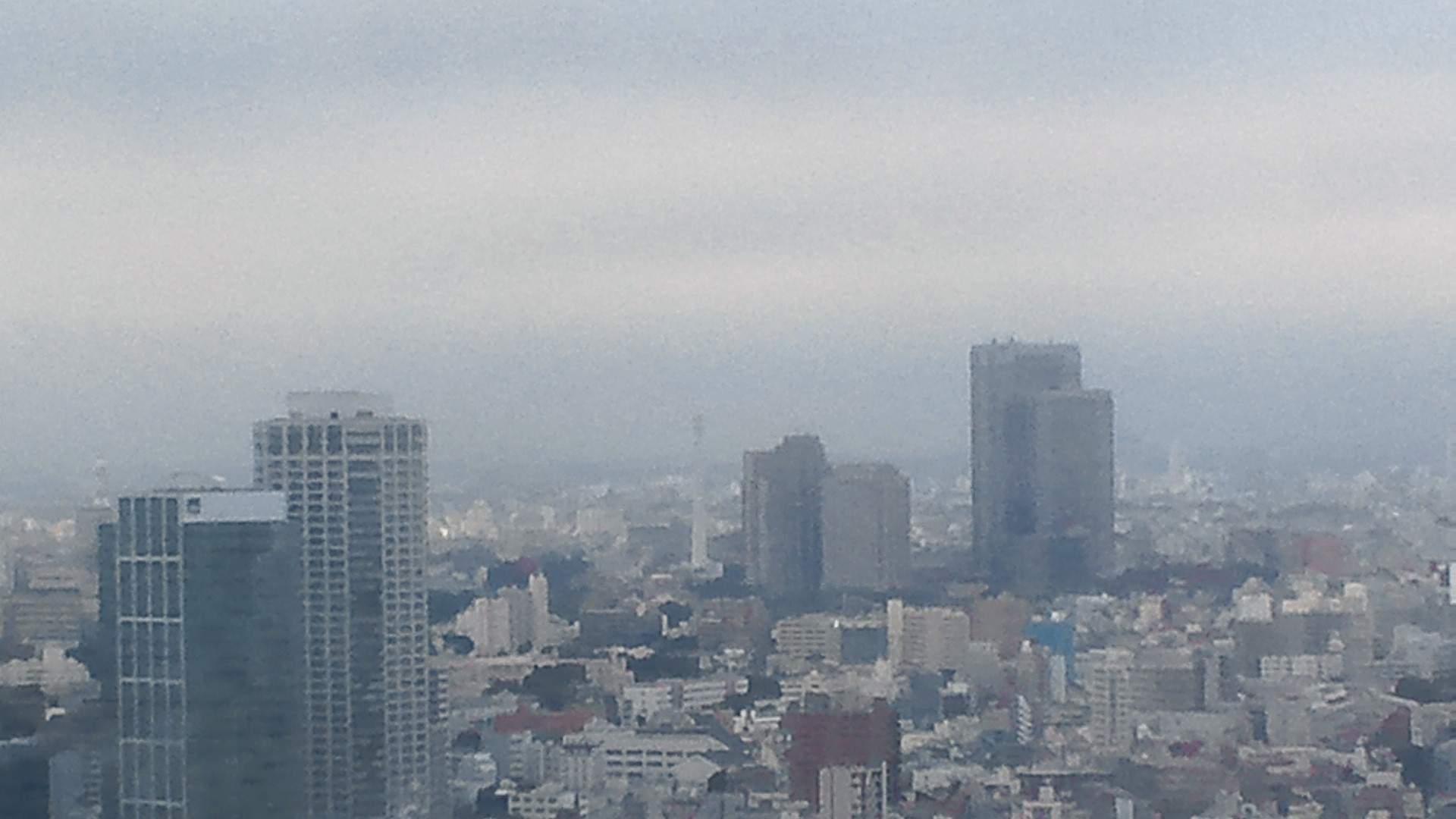 きょうの富士山 111024