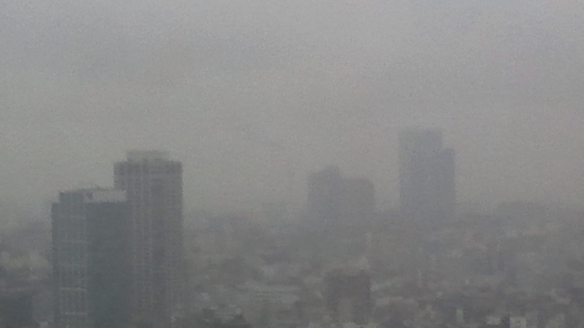 きょうの富士山 111209