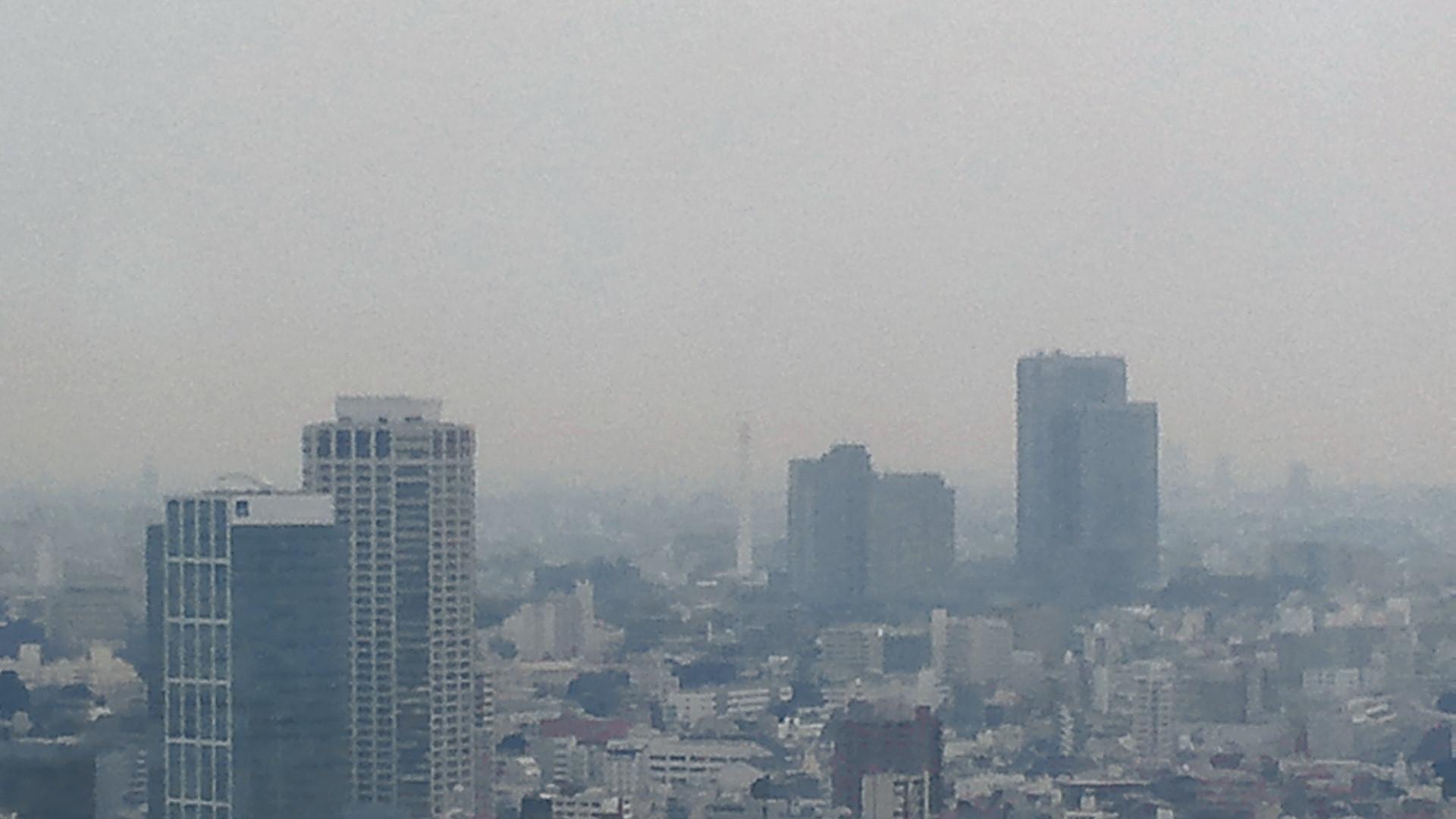 きょうの富士山 111222