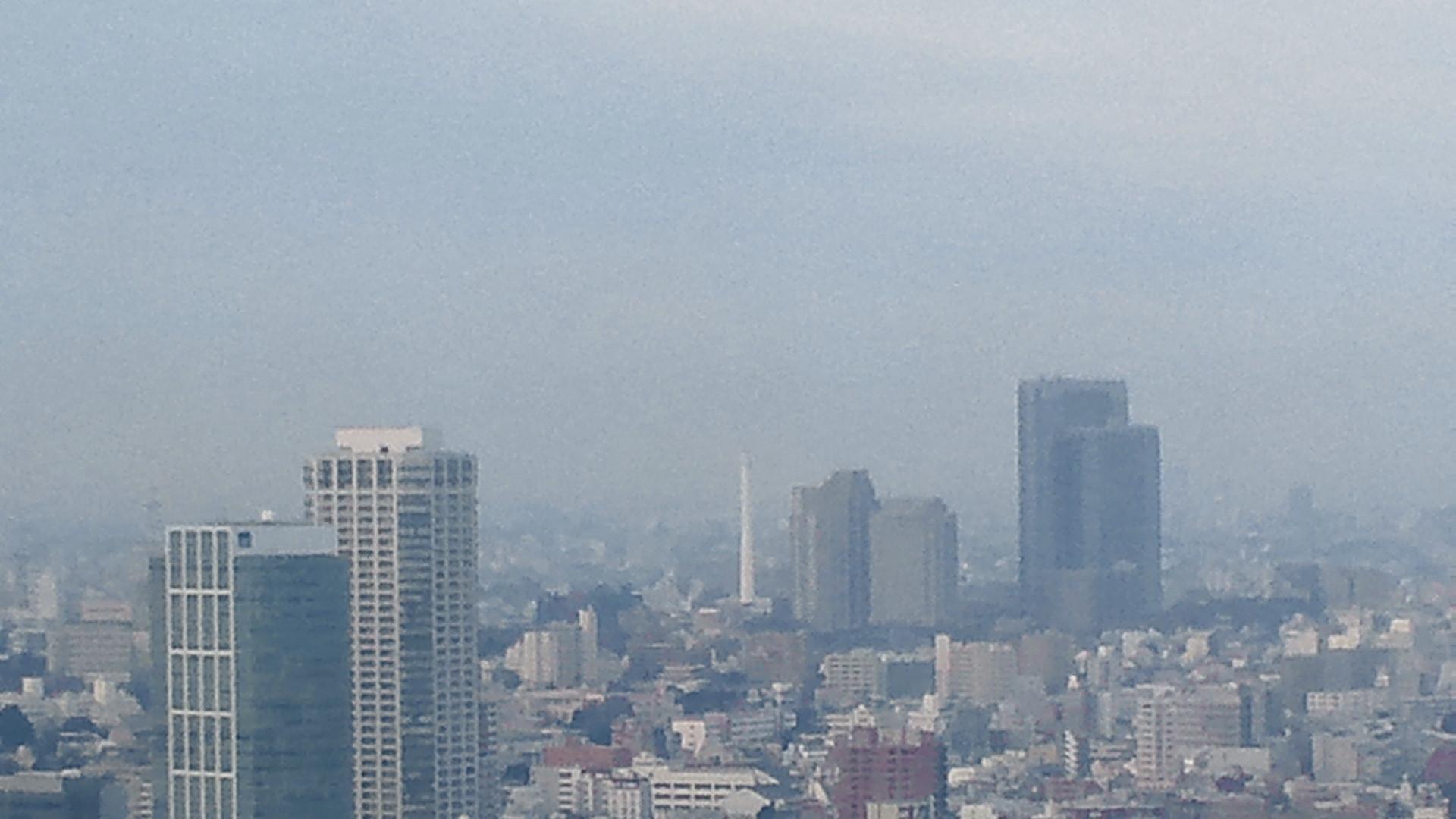 きょうの富士山 120119