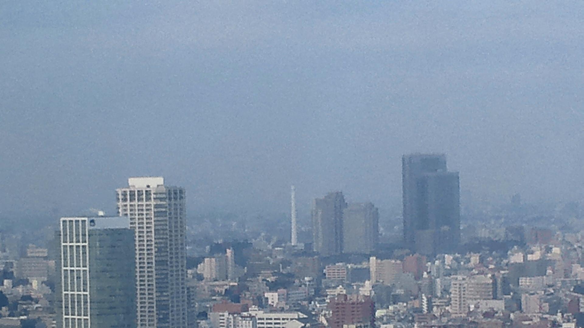 きょうの富士山 120222